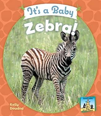 It's a Baby Zebra! 9781604531602