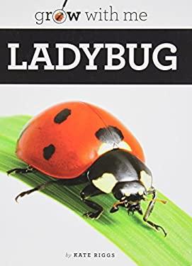 Ladybug 9781608182176