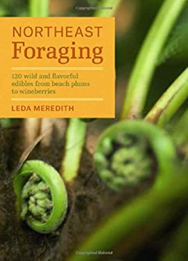 Northeast Foraging : 120 Wild and Flavorful Edibles from Beach Plums to Wineberries