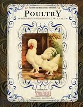 Poultry 7437239