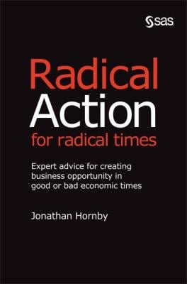 Radical Action for Radical Times: Expert Advice for Creating Business Opportunity in Good or Bad Economic Times 9781607640387