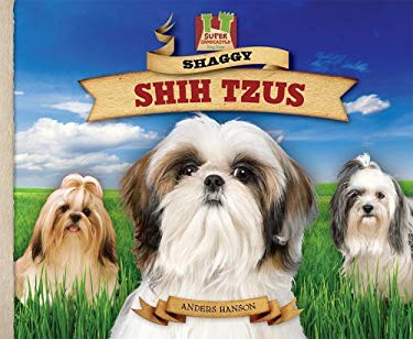 Shaggy Shih Tzus: Small But Sturdy! Lively! Alert! Proud! 9781604536195