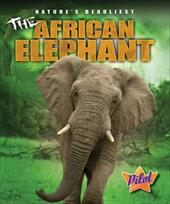 The African Elephant 14318491