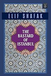 The Bastard of Istanbul 7385599