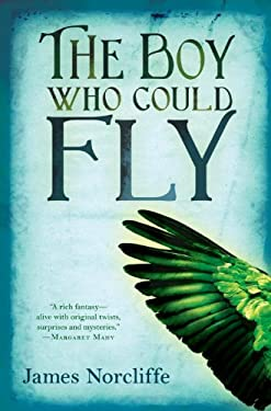 The Boy Who Could Fly 9781606840849