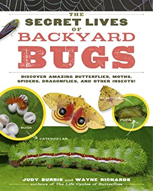The Secret Lives of Backyard Bugs: Discover Amazing Butterflies, Moths, Spiders, Dragonflies, and Other Insects! 9781603429856
