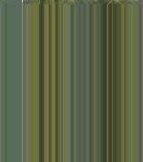 Tsunamis 9781600442346