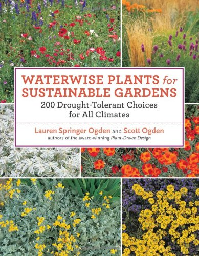 Waterwise Plants for Sustainable Gardens: 200 Drought-Tolerant Choices for All Climates 9781604691696