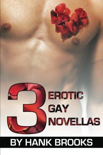 3 Erotic Gay Novellas 9781610980999