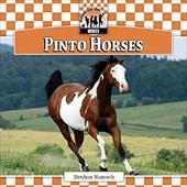 Pinto Horses 10696119