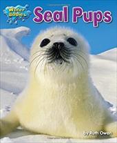 Seal Pups (Water Babies) 20173444