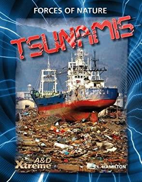 Tsunamis 9781617832635