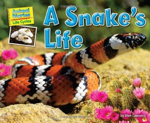 A Snake's Life 9781617724169