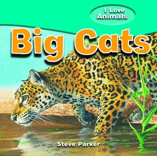 Big Cats 9781615332458