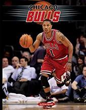 Chicago Bulls 13375527