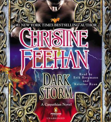 Dark Storm 9781611761252