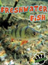 Freshwater Fish 14368931