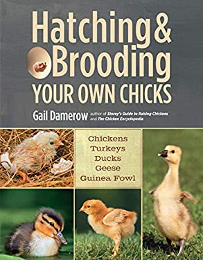 Hatching & Brooding Your Own Chicks: Chickens, Turkeys, Ducks, Geese, Guinea Fowl 9781612120140