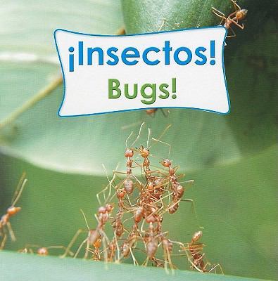 Insectos!/Bugs! 9781615900930