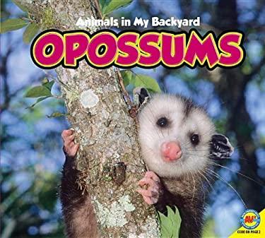 Opossums: Animals in My Backyard 9781619130029