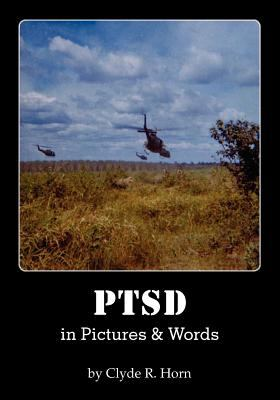 Ptsd in Pictures & Words 9781611700558