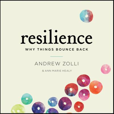 Resilience: Why Things Bounce Back 9781611748710