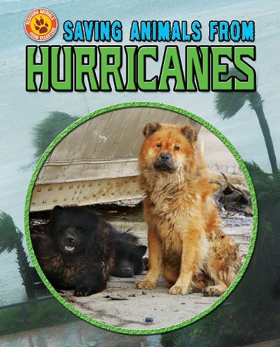 Saving Animals from Hurricanes 9781617722905
