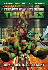 Teenage Mutant Ninja Turtles Animated 20771323