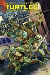 Teenage Mutant Ninja Turtles Heroes Collection 21378492
