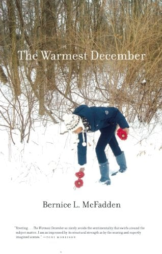 The Warmest December 9781617750359