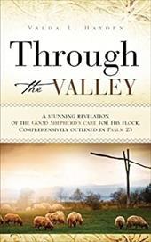 Through the Valley 7443079