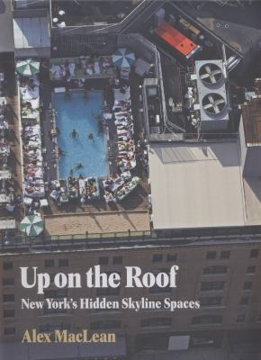 Up on the Roof: New York's Hidden Skyline Spaces