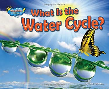 What Is the Water Cycle? 9781617724022