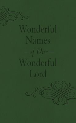 Wonderful Names of Our Wonderful Lord 9781620291511