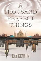 A Thousand Perfect Things 22651188