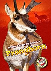 Pronghorn (North American Animals) 23606918