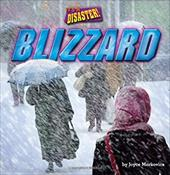 Blizzard (It's a Disaster!: Little Bits! First Readers) 22368849