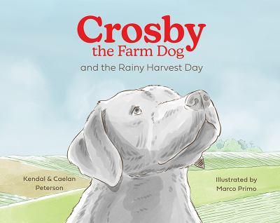 Crosby the Farm Dog and the Rainy Harvest Day