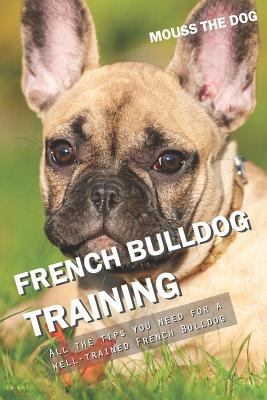 FRENCH BULLDOG TRAINING: All the tips you need for a well-trained French Bulldog