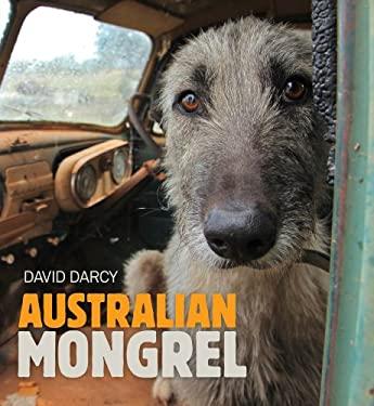 Australian Mongrel