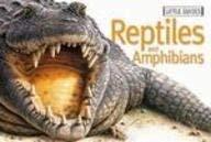 Reptiles 9781740895453