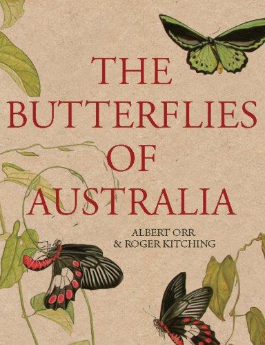 The Butterflies of Australia 9781741751086