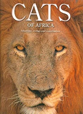 Cats of Africa