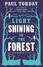 Light Shining in the Forest 20685359