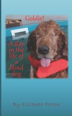 Goldie!: A Day in the life of a Blind Dog