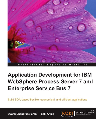 Application Development for IBM Websphere Process Server 7 and Enterprise Service Bus 7 9781847198280