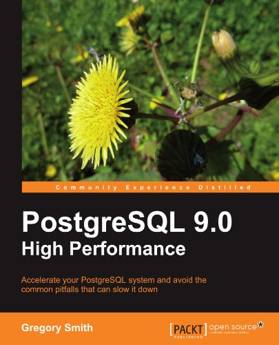 PostgreSQL 9.0 High Performance 9781849510301