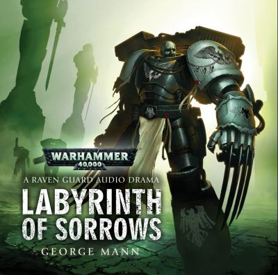 Labyrinth of Sarrows 9781849701334