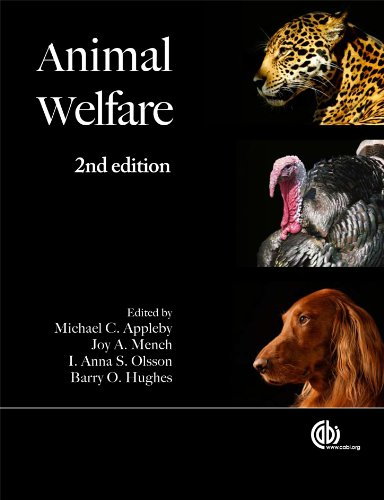 Animal Welfare 9781845936594