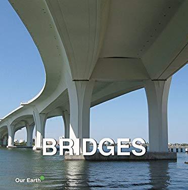 Bridges 9781844847730